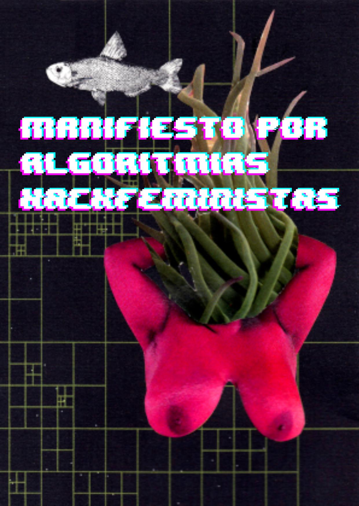 assets/covers/single/manifiesto_por_algoritmias_hackfeministas.png